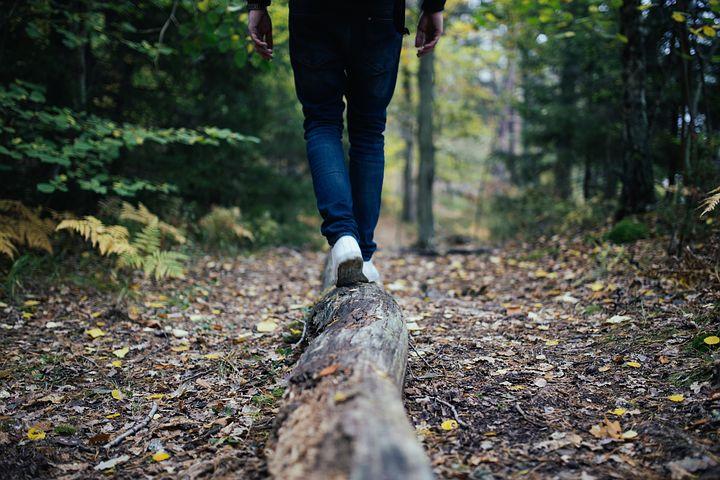 wood-691629__480